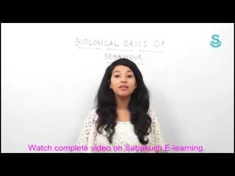 Biological Basis of Behaviour