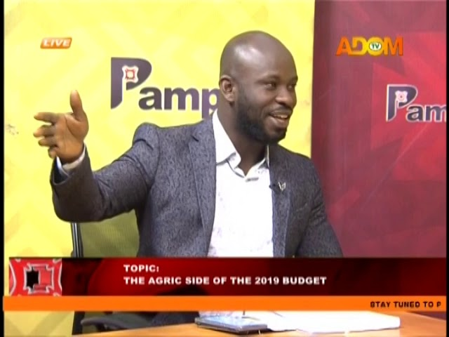 The Agric Side Of The 2019 Budget - Pampaso on Adom TV (20-11-18)