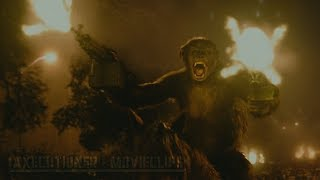Dawn Of The Planet Of The Apes |2014| Fight/Battle Scenes [Edited]