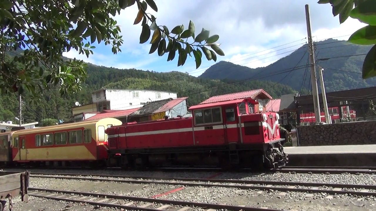 台湾鉄道】阿里山鉄道 (2016年...