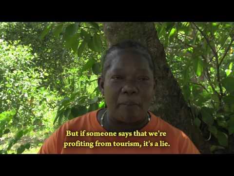 ZEDEs: Neocolonialism and land grabbing in Honduras
