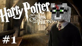 das BESTE HARRY POTTER GAME 😍 | Harry Potter und der Orden des Phönix #1