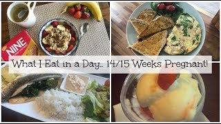 What I Eat in Day   14-15 Weeks Pregnant