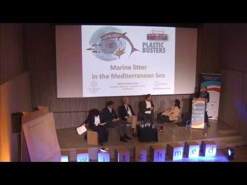 Panel_Circular Economy Businesses In Mediterranean