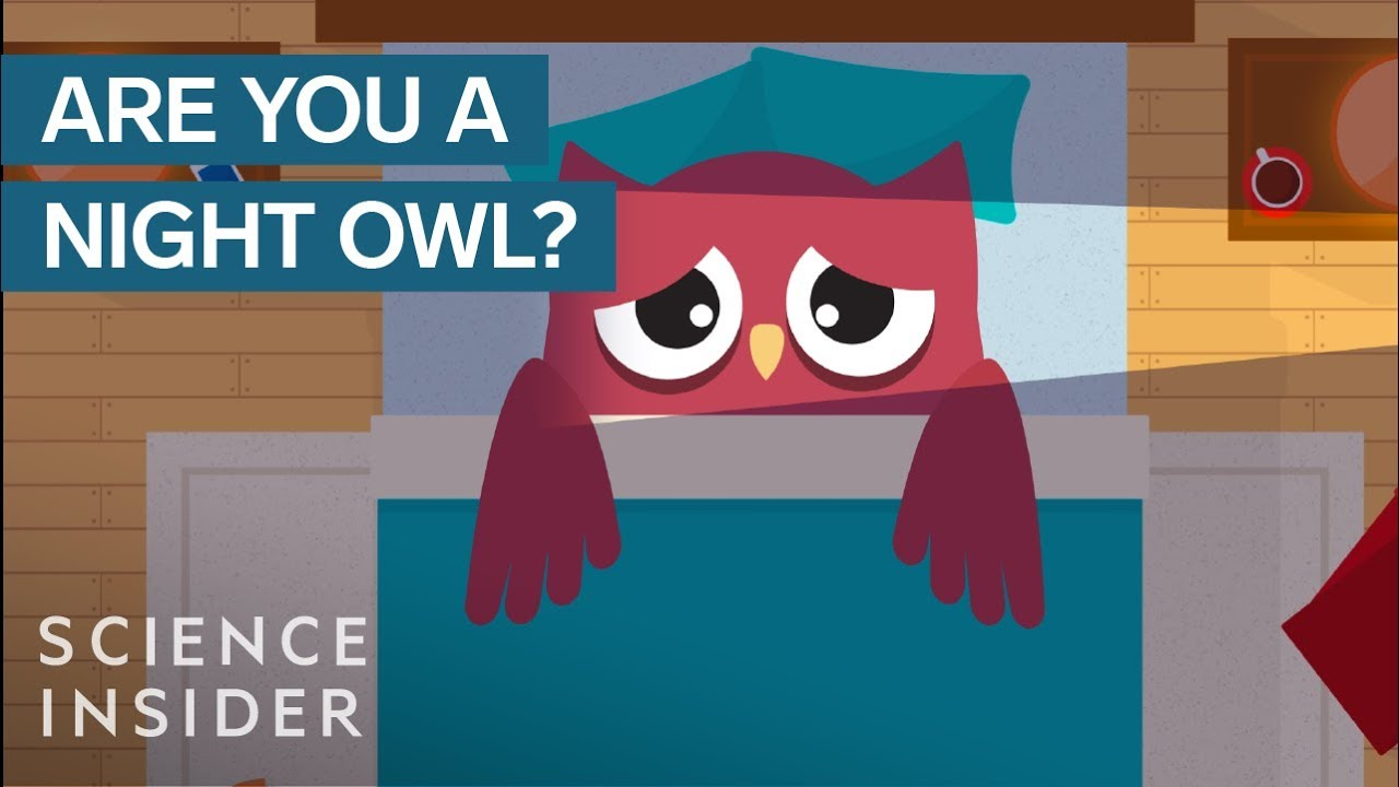 What Happens When A Night Owl Wakes Up Early