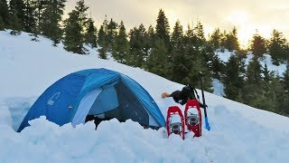 Snow Camping in Washington with My Brother! (SUV Camping/Vanlife Adventures)