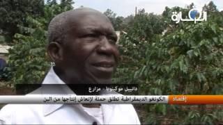 الكونغو الديمقراطية تطلق حملة لإنعاش إنتاجها من البن