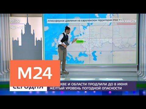 Синоптики предупредили о погодной опасности 8 июня - Москва 24