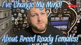 I've Changed My Mind!    Why You Should Buy Breed Ready Females!