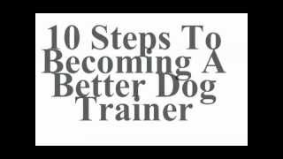 10 Steps To Becoming A Better Dog Trainer