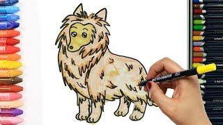 Как нарисовать собака - колли | Раскраски детей HD | Рисование и окраска | Рисование для детей