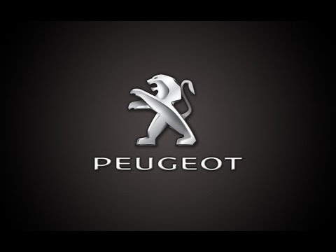 Show Me Tell Me In A Peugeot 207 2 Of 4 Doovi