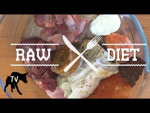 Tags of raw barf diet cat meme tube australian kelpie eating raw barf diet forumfinder Choice Image