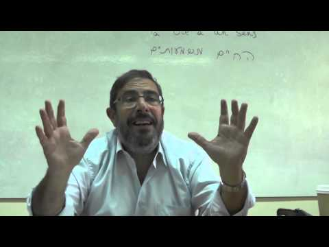 RENCONTRE INSOLITE EN VIEILLE VILLEde YouTube · Durée:  1 minutes 57 secondes