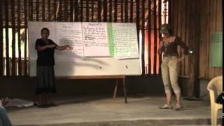 Participación política y pueblos indígenas-Nicaragua