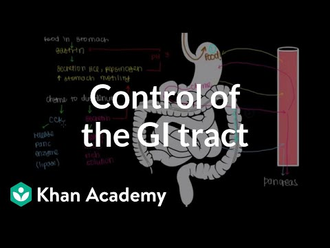 Control of the GI tract | Gastrointestinal system physiology | NCLEX-RN | Khan Academy