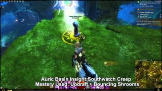 GW2 Auric Basin Mastery Insights Guide