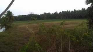 Pangala River Front property.
