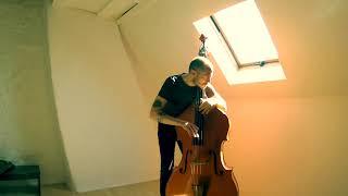 Pirastro Obligato Double Bass Strings