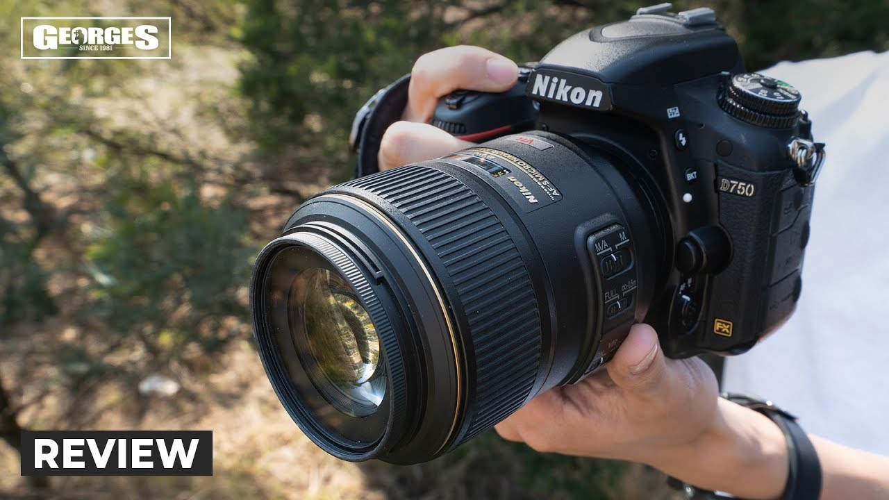 A Must Have Nikon Macro Lens | Nikon 105mm Micro F2 8 Review by Georges  Cameras