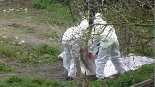 Mash Barn Lane. Asbestos removal 16/03/12