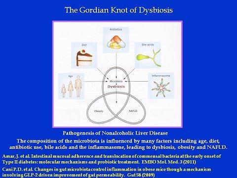 Composite Probiotics 2014   David N Varon MD