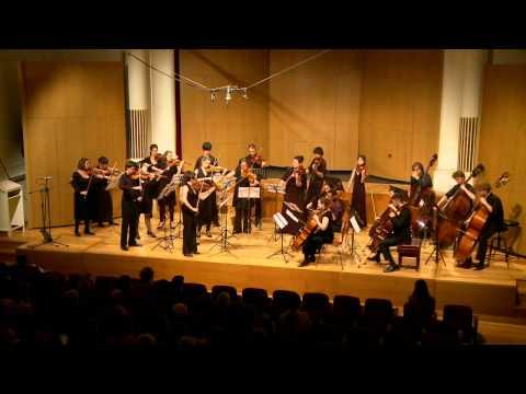 Strauss Metamorphosen for 23 solo strings | Sydney Camerata