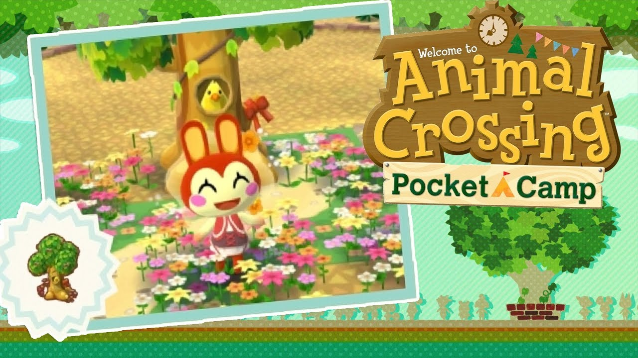 Back To Camp Bunnies Red Riding Hood Cookies Animal Crossing Pocket Camp 7