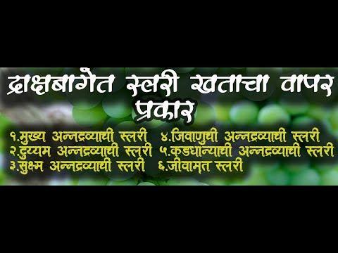 shrihari ghumare| बागेत स्लरी बनविण्यातचे चार प्रकार व पद्धती