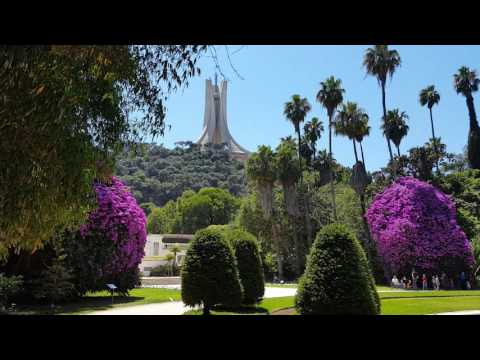 Beautiful video of algiers