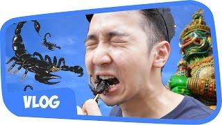 MAKAN KALAJENGKING !! THAILAND BANGKOK VLOG