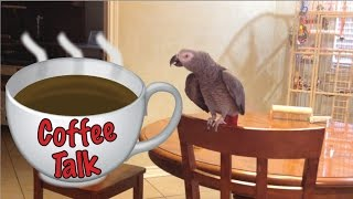 Morning Coffee Talk with Einstein the Talking Texan Parrot