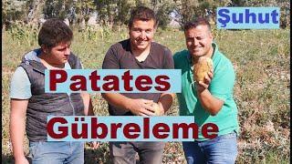 Afyonkarahisar - Patates Yetiştiriciliği - Gübreleme - Sulama - Bakım - Tohum Seçimi