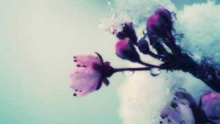 Dj Tapolsky & Redco feat. Alexa - Ранком