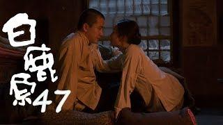 白鹿原 | White Deer 47【DVD版】(張嘉譯、秦海璐、何冰等主演)