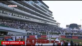 Кадыров на скачках в Дубаи