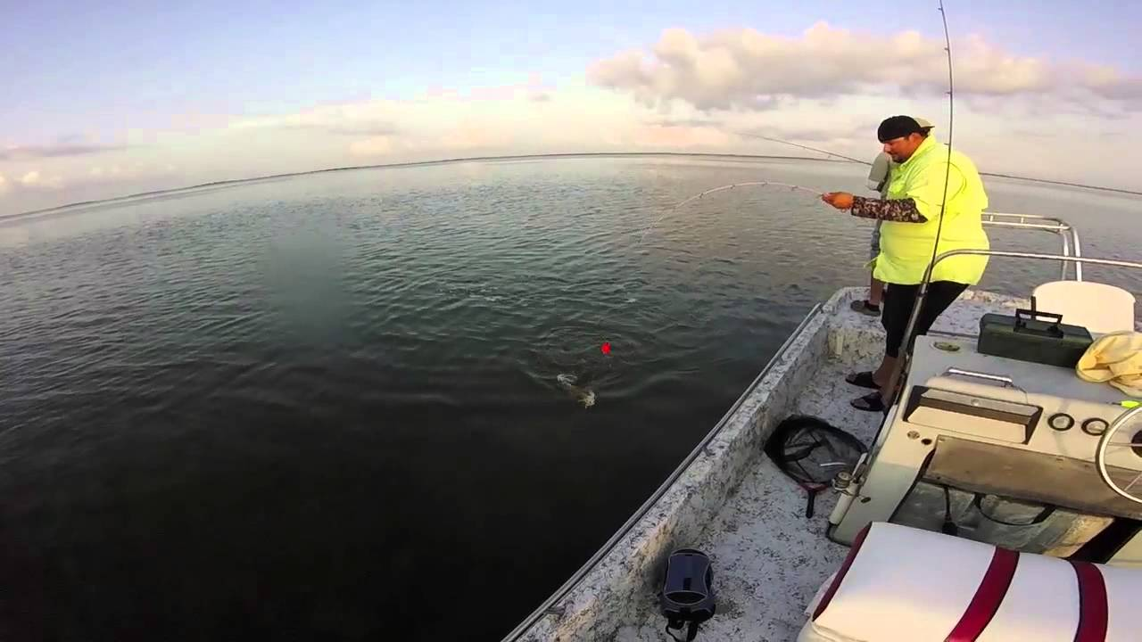 Fishing for red fish and trout in the lower laguna madre arroyo city youtube for Arroyo city fishing