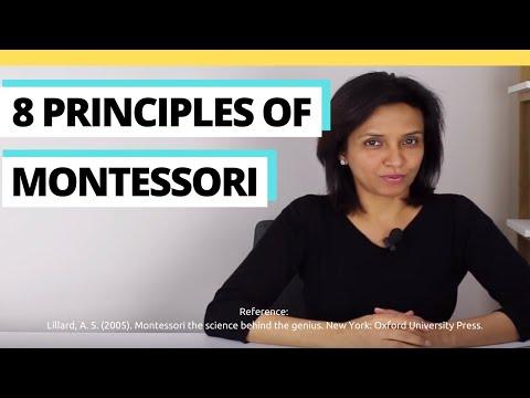 8 Principles Of Montessori
