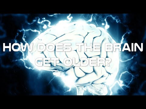How does the brain get older - Learn the aging process of the brain Crash Course