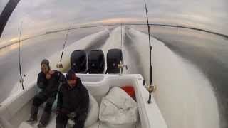 2013Dec28 Wahoo Trolling 36 Invincible