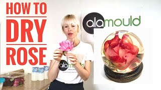 HOW TO DRY ROSE IN SILICA GEL. 3D Resin Art! Alamould Moulds