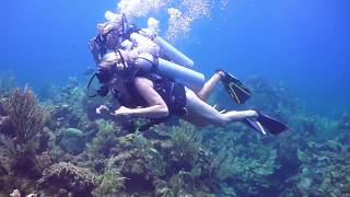 Divemaster Internship - From Zero to Hero on Roatan!