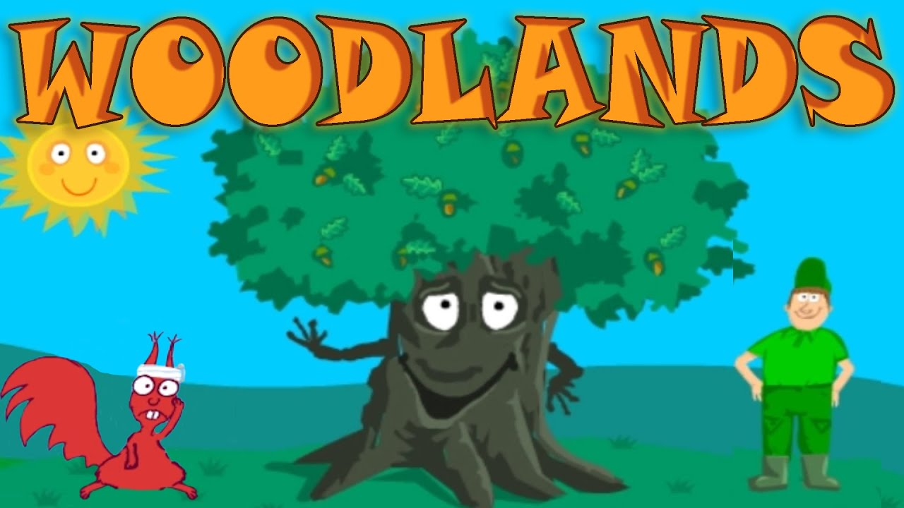 learn about the needs of the tree woodland wildlife interesting