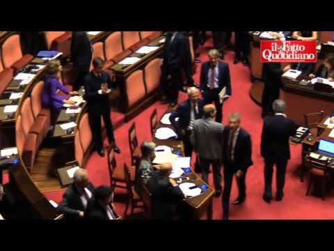 Riforma Senato, Scillipoti protesta in Aula contro Giorgio Napolitano