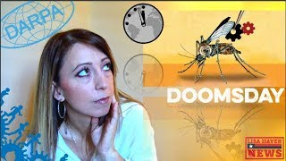 DOOMSDAY DEAD AHEAD DARPA Did Something No One DARE Do Itll Have DIRE Repercussions