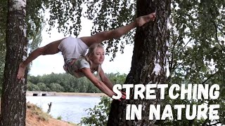 Stretching In Nature Oversplits