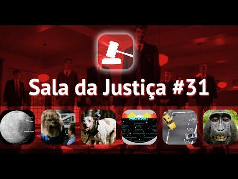 Sala da Justiça do MB 31. Robin Williams. Hyperlapse. Apocalipse Robótico. selfie do macaco e mais