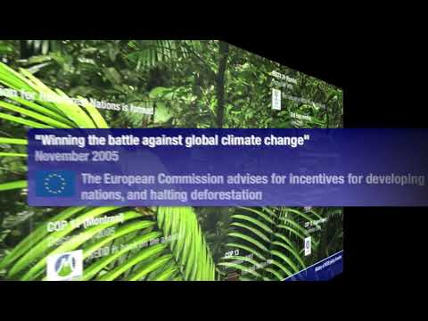 The History of REDD Policy from Kyoto to Copenhagen   CrazyMotion!