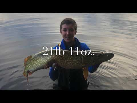 21lb 11oz Scottish Pike NEW PB (UK Pike Fishing)