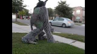 Two horned, four legged, hairy scary homemade costume on stilts